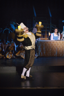 Beauty and the Beast | Theater Costume Rentals