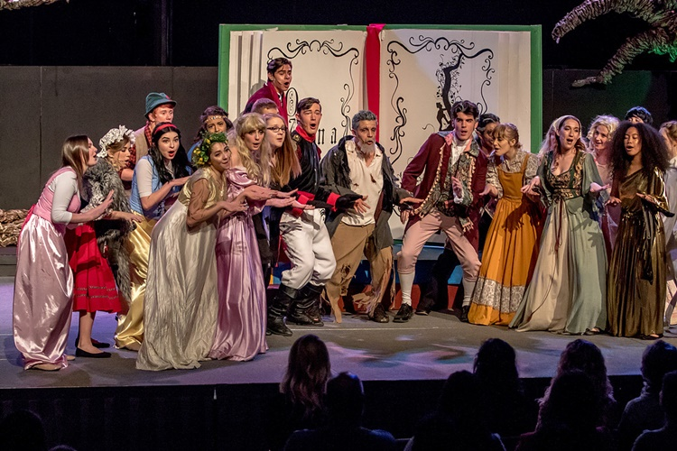 INTO THE WOODS (additional costuming) | Theater Costume Rentals